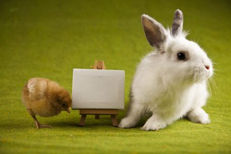 Easter bunny on chick green background Stock Photo - 6539460