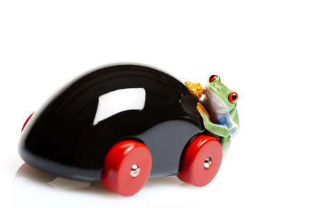 Toy and frog photo