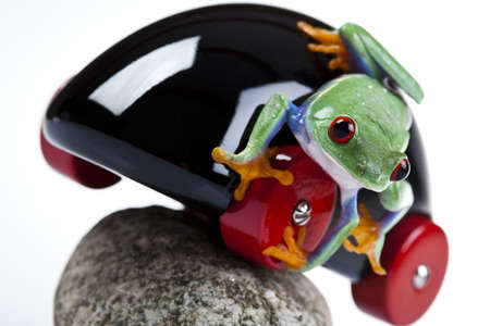 lean out: Driver gree frog