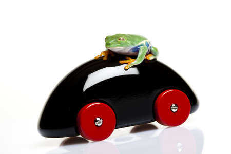 Wooden car and frog   photo