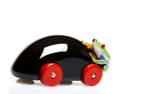 Frog driver photo