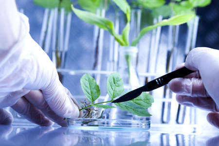 biological: Laboratory technician