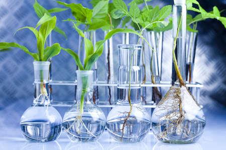 Eco laboratory  Stock Photo