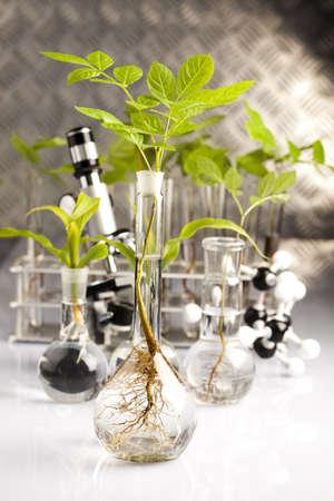 Experiment  Stock Photo