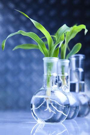 Biotechnology Stock Photo