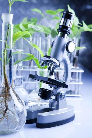 Microscope and laboratory glass photo