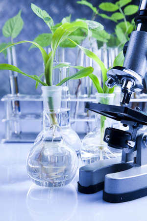 plant science: Laboratory glass