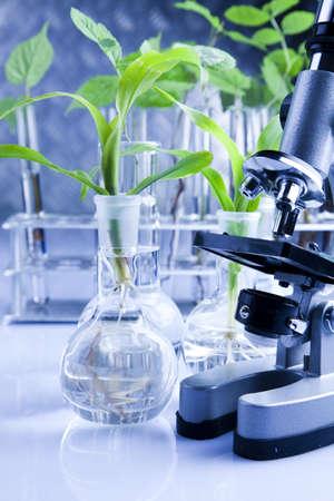 laboratory glass: Vetro di laboratorio