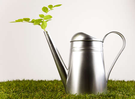 wellingtons: Watering Can