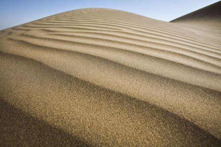 desert sun: Dunes