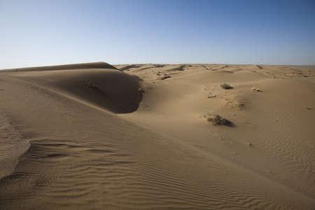 Desert dunes  photo
