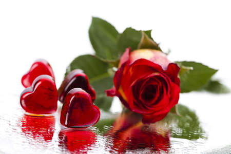 couple dating: Valentines day and rose