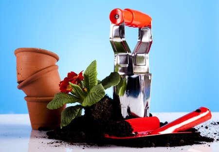Garden tools concept photo