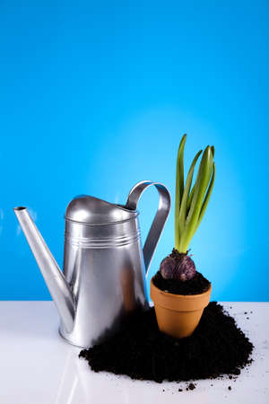 Watering Can And Garden photo
