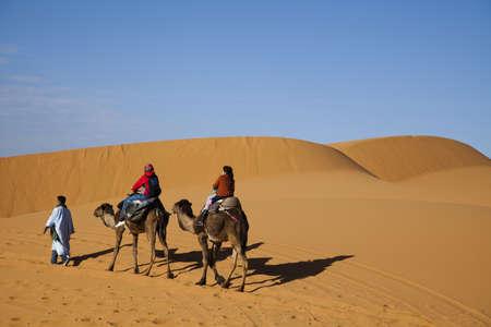 merzouga: Sand Desert with Dunes in Marocco, merzouga