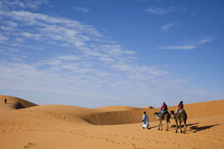 erg: Sand Desert with Dunes in Marocco, merzouga