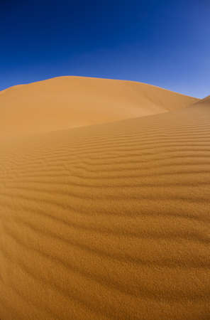 Desert dunes in Morocco  photo