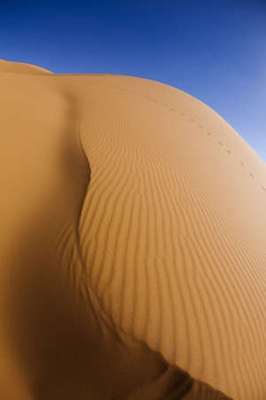 Sand Desert with Dunes in Marocco, merzouga photo