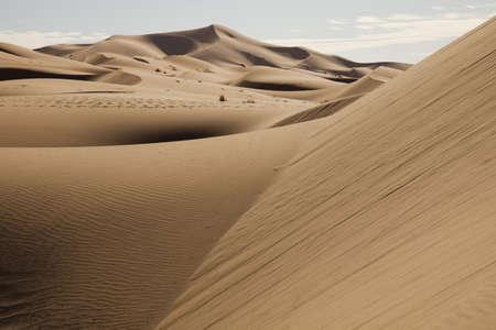 inhospitable: Landscape of desert