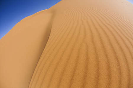 Dunes in Moroccan Sahara  photo