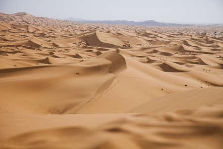 inhospitable: Desert dunes