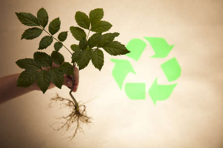 environmental protection: Recycle symbol, ecology Stock Photo