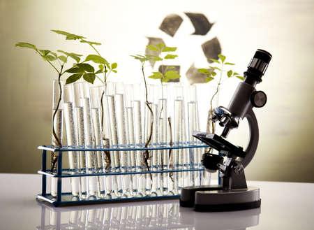 laboratorio: Signo de reciclaje en laboratorio  Foto de archivo