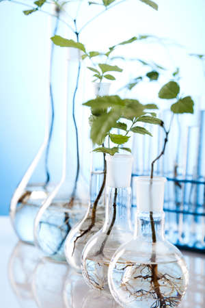 biotech: Eco laboratory  Stock Photo