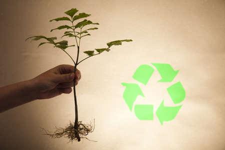 Reciclaje Cartel Con Imágenes De La Naturaleza Fotos Retratos