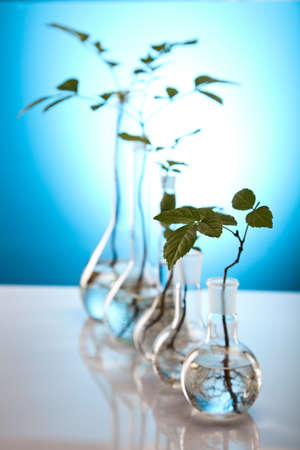 genomics: Close-up of plants in test tubes aboratory
