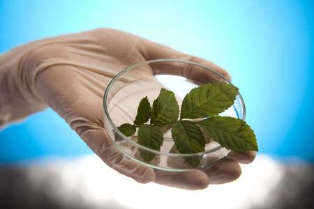 epidemiology: Eco laboratory  Stock Photo