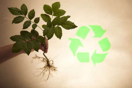 Recycle symbol, ecology Stock Photo - 10078162