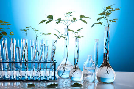 genomics: Plant laboratory