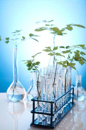 genomics: Eco laboratory  Stock Photo