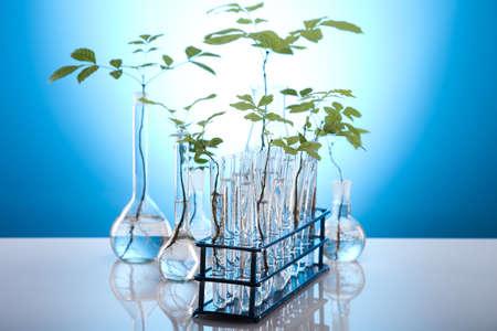 geneticist: Eco laboratory  Stock Photo