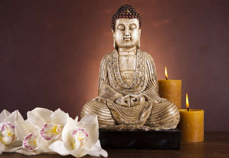 Buddha statue in a meditation  photo