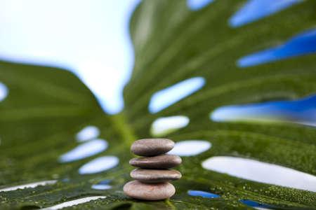 Balance Stock Photo - 12140808