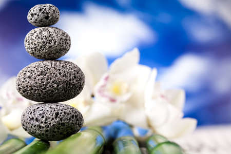 Stones and bamboo, zen Stock Photo - 12141062