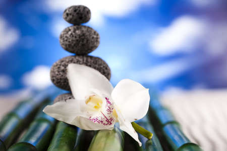 Stones and bamboo, zen Stock Photo - 12140829