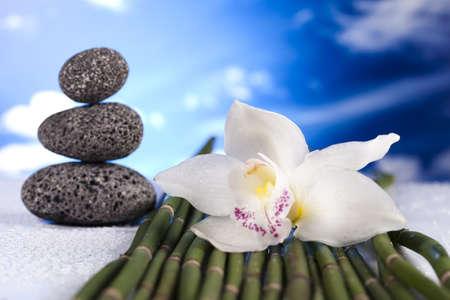 Stones and bamboo, zen photo
