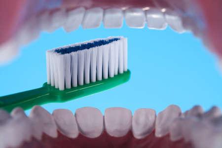 clean arteries: Teeth, Dental health care objects