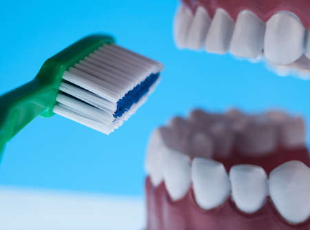 clean arteries: Teeth Stock Photo