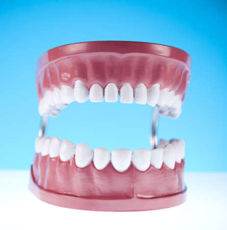 prosthetics: Teeth Stock Photo