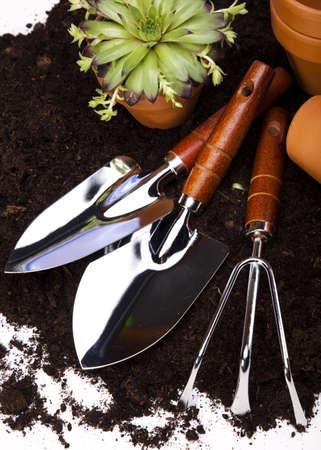Gardening concept Stock Photo - 14234567