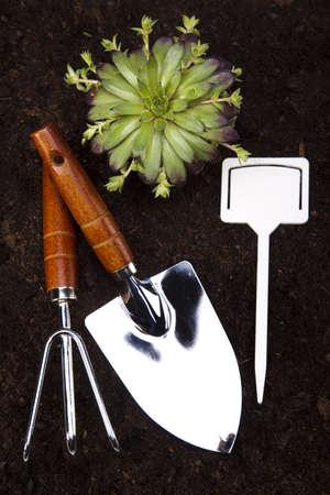 Garden concept photo