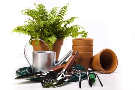 Garden tools on white background Stock Photo - 14235536