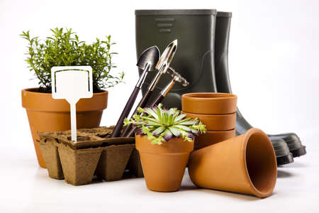 Garden boots with tool, plant photo