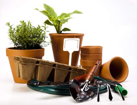 Garden concept Stock Photo - 14235538