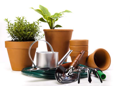 Assorted gardening Stock Photo - 14233781