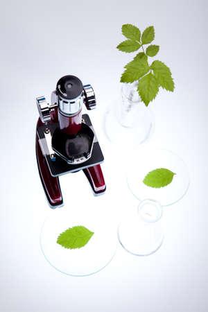 pipeptte: Chemistry equipment, plants laboratory